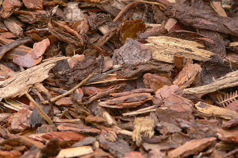 Yard Mulch Bark Chips